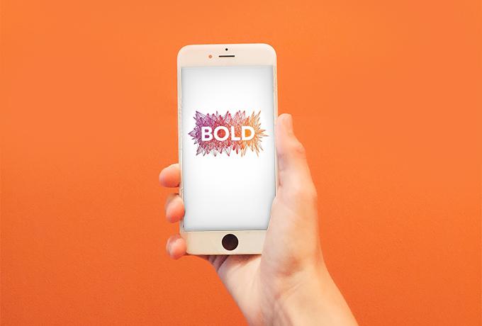 mindbody bold 2017